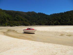 Личные истории иммиграции в Новую Зеландию