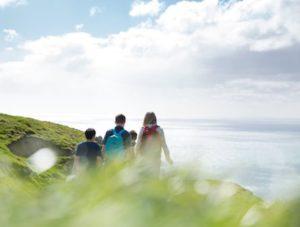 Новые правила визы выпускника в Новой Зеландии