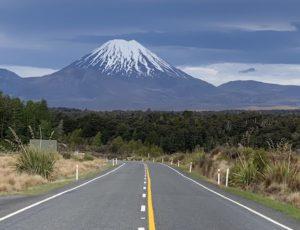 Поправка иммиграционному акту в связи с COVID19 в Новой Зеландии